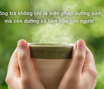 9 lợi ích uống trà mỗi ngày